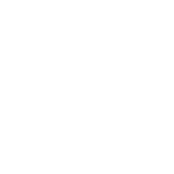 Wordpress_website